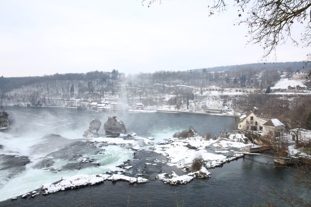 rhine falls by train