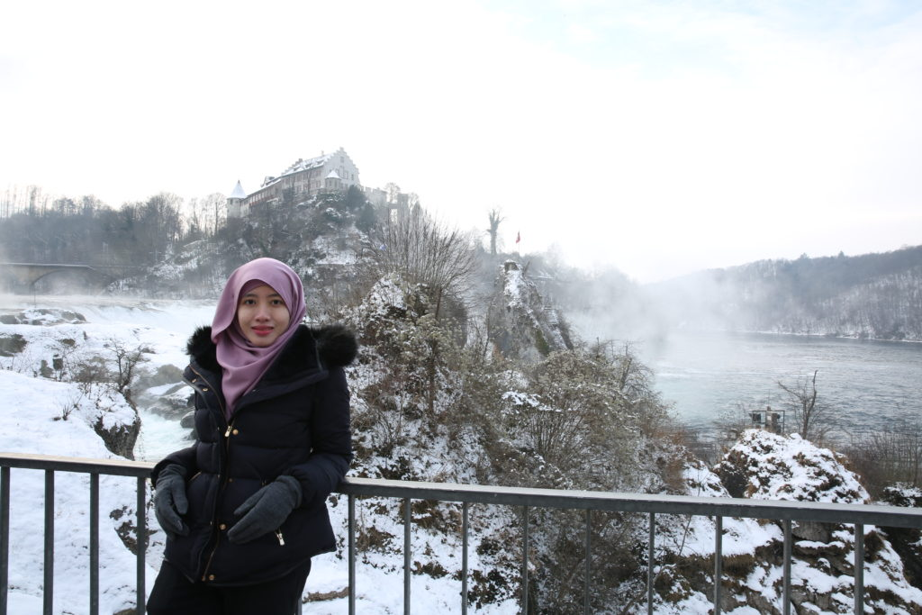 rhine falls during winter travel blog