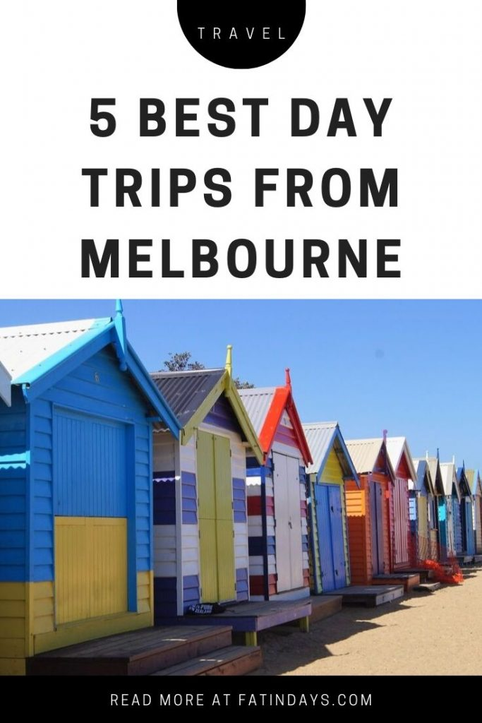 5 Best Day Trips from Melbourne