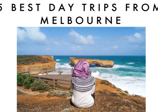 top 5 best day trips from Melbourne